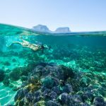 Woman snorkelling off Lord Howe Island.