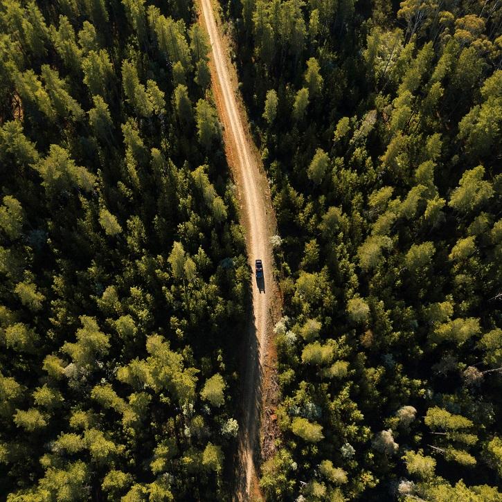 Car driving through Woomargama National Park, Wantagong